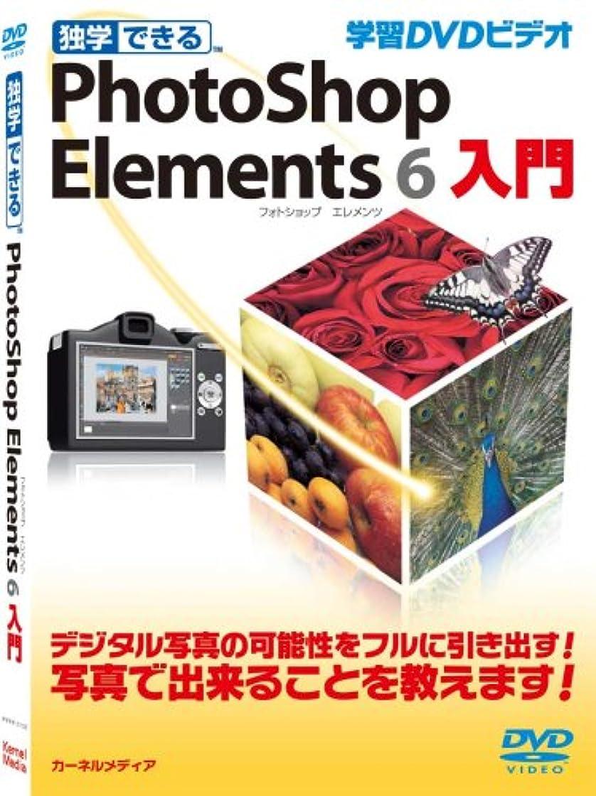 記念家主批判する独学できる Photoshop Elements 6 入門