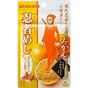 UHA味覚糖 忍者めし みかん 20g×10袋
