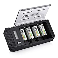 EBL 単二充電池充電器セット 単一単二単三単四9V対応ニッケル水素ニカド充電池急速専用充電器 2 USB (1.0A*2)+単二(5000mAh)電池*4
