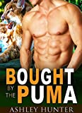PUMA Bought By The Puma (Studly Shifters Book 1) (English Edition)