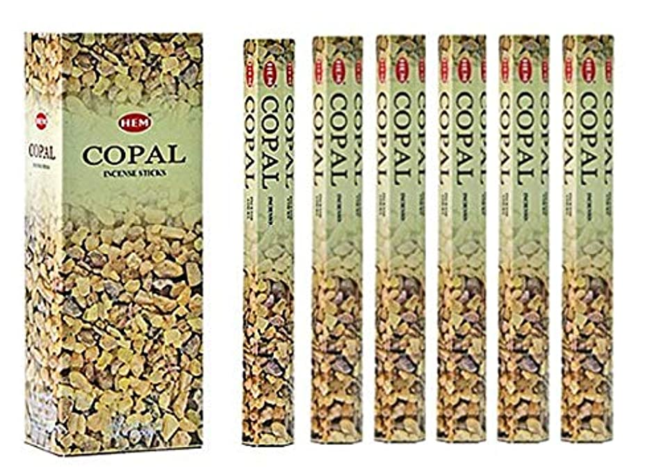 コミュニケーションスクラブ放つHEM(ヘム)社 コーパル香 スティック COPAL/ 6箱セット