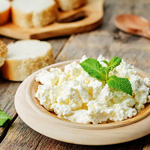 IQFイタリア産無添加リコッタチーズ1000g ricotta cheese1kg