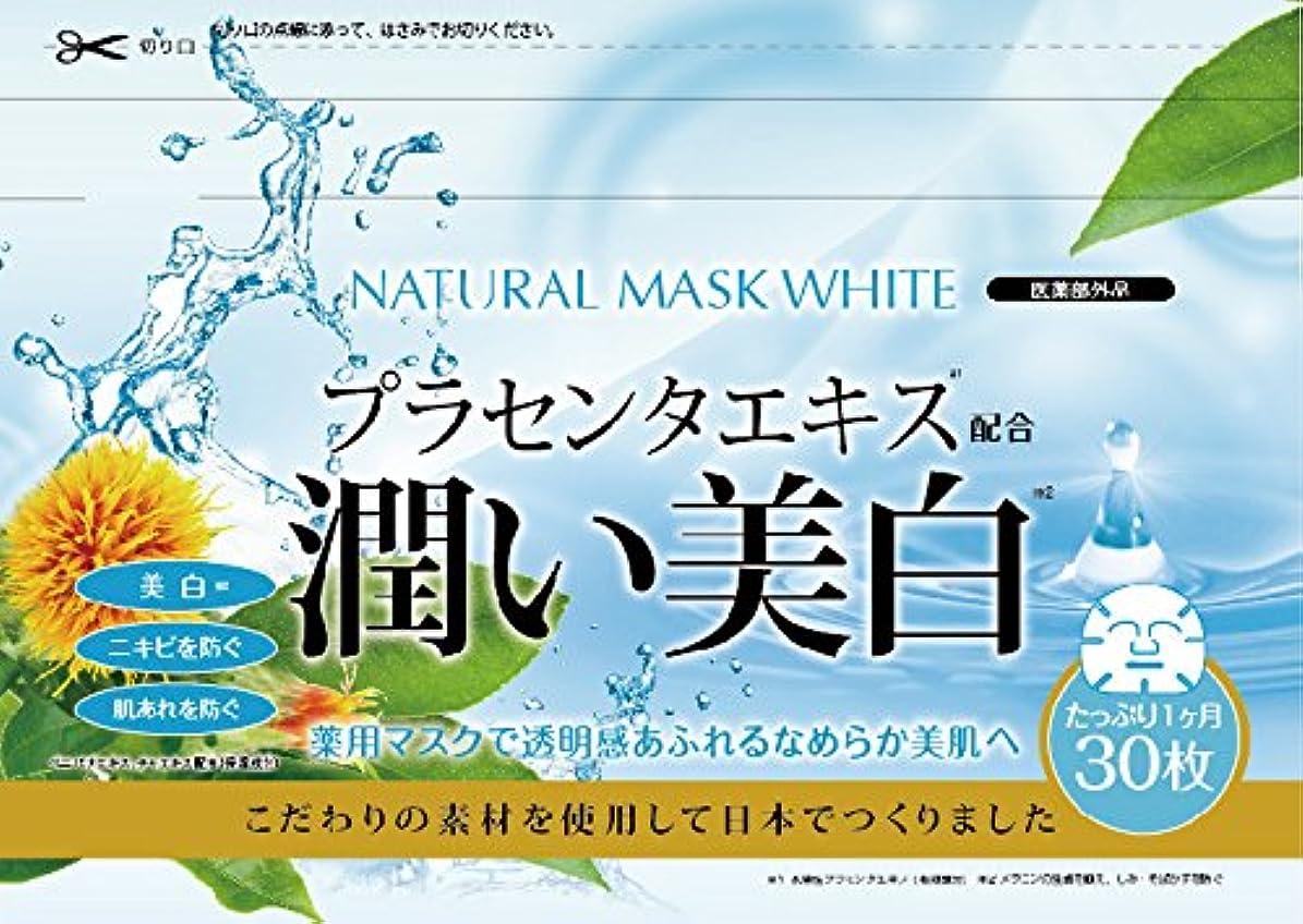 キャプテンパキスタン規制ナチュラルマスク ホワイト 30枚入り (医薬部外品)