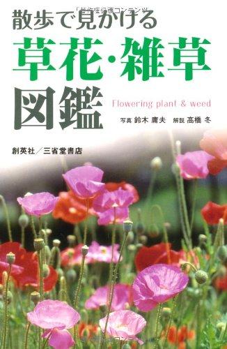 散歩で見かける草花・雑草図鑑の詳細を見る