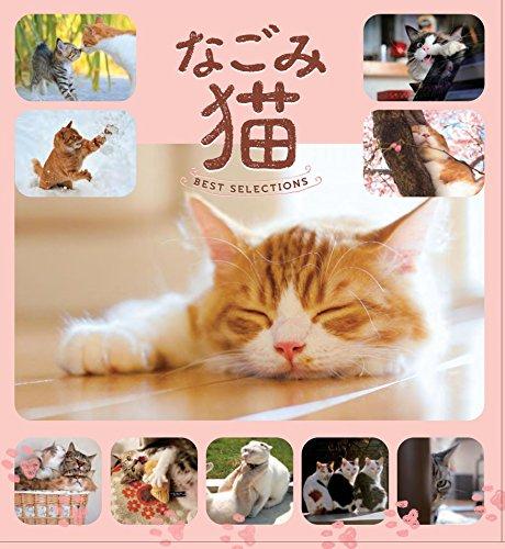 なごみ猫 BEST SELECTION 最高に癒される飼い猫たちが大集合の詳細を見る