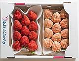 南国フルーツ 福岡産紅白いちごあまおう&淡雪 2パック