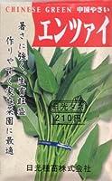 【種子】エンツァイ 1dl