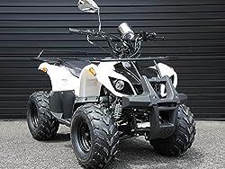 IceBear(アイスベアー) 四輪バギー ATV 50cc 前進1速バック付 ミニカー登録 公道走行可 白 HL50BW