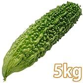 沖縄県産・ゴーヤ 5kg