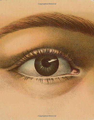 RoomClip商品情報 - John Derian Picture Book