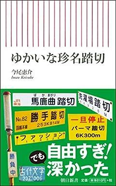 珍名踏切をたどる (朝日新書)