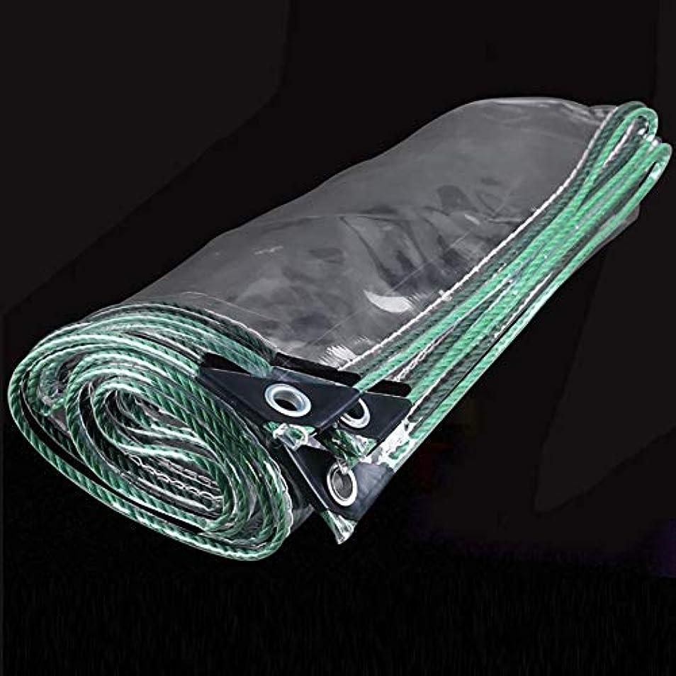 座標覚えているエンコミウム19-yiruculture 透明防雨布厚いポンチョターポリンバルコニーレインバイザーターポリン絶縁ターポリン屋外ターポリンプラスチック布 (サイズ : 1.6*2m)