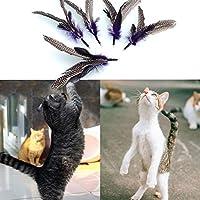 新しいホット5pcsの猫鳥ティーザーフェザーフレンジーリフィルの交換ヘッドペットのおもちゃ の新しい設計されたブランドの猫の面白いおもちゃ:ランダム、S