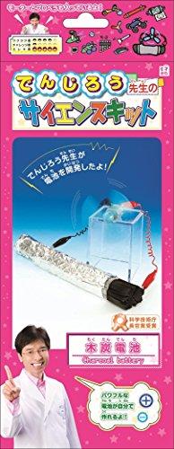 でんじろう先生のサイエンスキット『木炭電池』