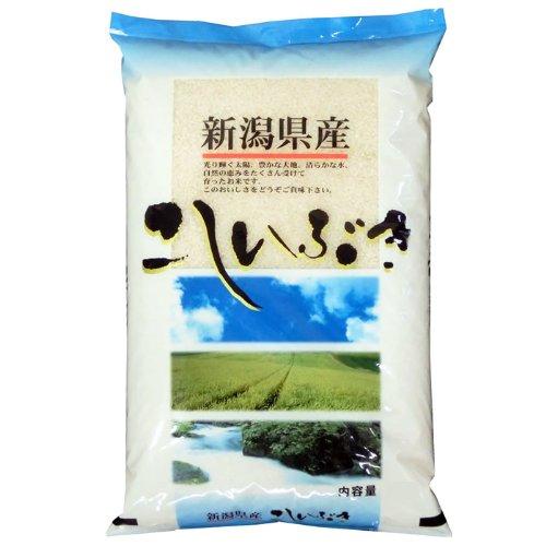 【精米】新潟県産 白米 北陸 越後の米 こしいぶき 5kgx4袋 令和元年産 新米 【予約販売】