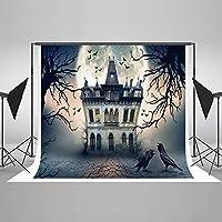 ゴーストハロウィン城Haunted Night豪華なBackdrop–Velvety折りたたみ可能なシームレスなコットン生地Studio Props pour Toussaint 10x 10ft