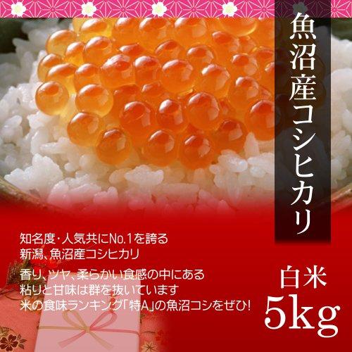 【お取り寄せグルメ】魚沼産コシヒカリ 5kg 白米・贈答箱入り/ギフトに新潟の最高級ブランド米を