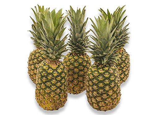 フルーツなかやま パイナップル フィリピン産 農家限定 5個入 糖度15度以上 大きさ15cm以上 当店厳選品