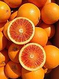 和歌山県産 ブラッドオレンジ 5キロ サイズ混合(品種:Tarocco)
