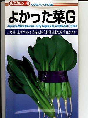 よかった菜G カネコ種苗の小松菜種です