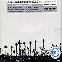 Article 3 by Meshell Ndegeocello