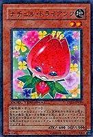 【シングルカード】遊戯王DT ナチュル・トライアンフ ノーマル DT05-JP020