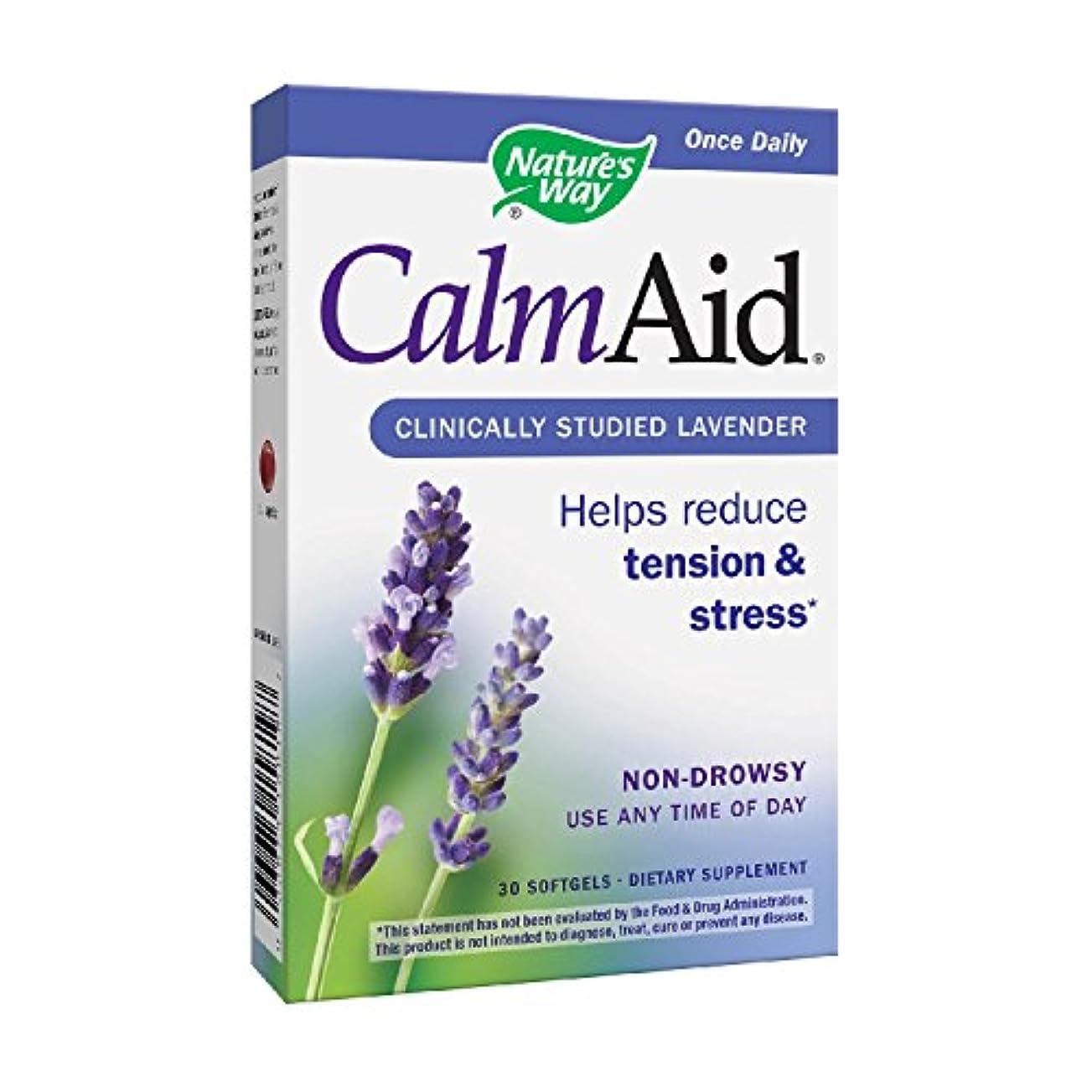 合理的伝導率海港海外直送品 Nature's Way Calm Aid, 30 sgels
