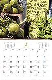 2019 岩合光昭 世界の猫カレンダー(壁掛け) ([カレンダー]) 画像