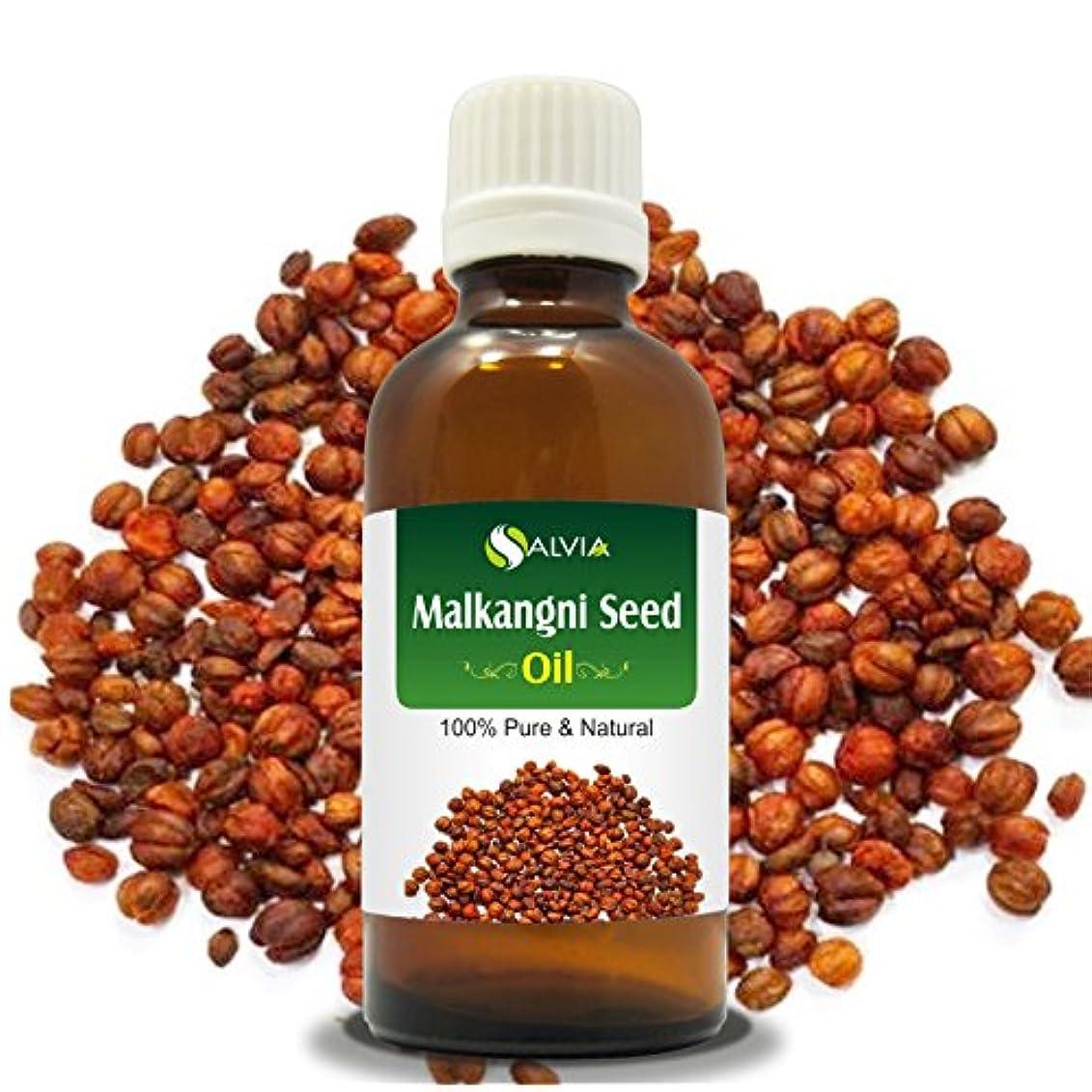 大胆なブラシ重要MALKANGNI SEED OIL(CELASTRUS PANICULATUS)100% NATURAL PURE CARRIER OIL 100ML