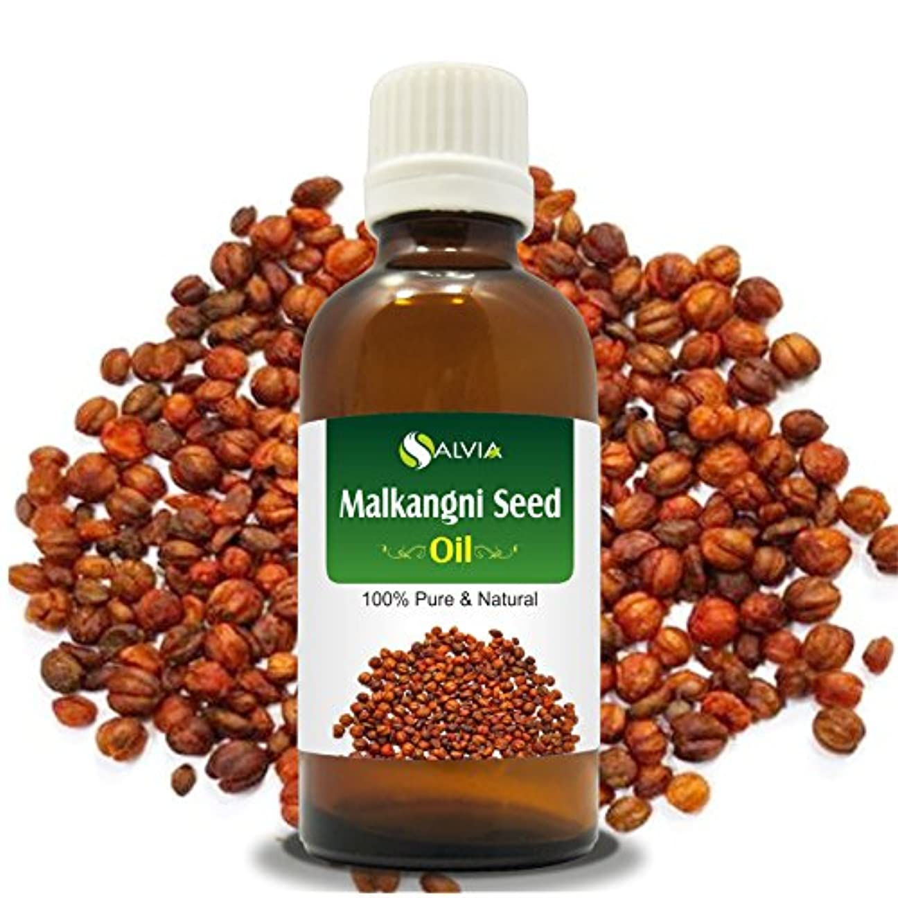 接尾辞成長クリームMALKANGNI SEED OIL(CELASTRUS PANICULATUS)100% NATURAL PURE CARRIER OIL 100ML