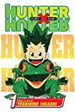 Hunter x Hunter, Vol. 1: The Day of Departure