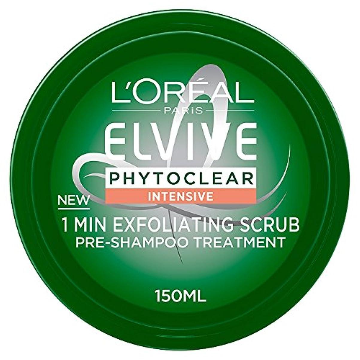 銀寝室を掃除する上にPurifying Mask Phytoclear Pre-shampoo L'Oreal Expert Professionnel (150 ml)