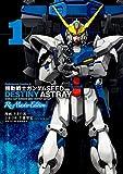 機動戦士ガンダムSEED DESTINY ASTRAY Re: Master Edition(1) (角川コミックス・エース)