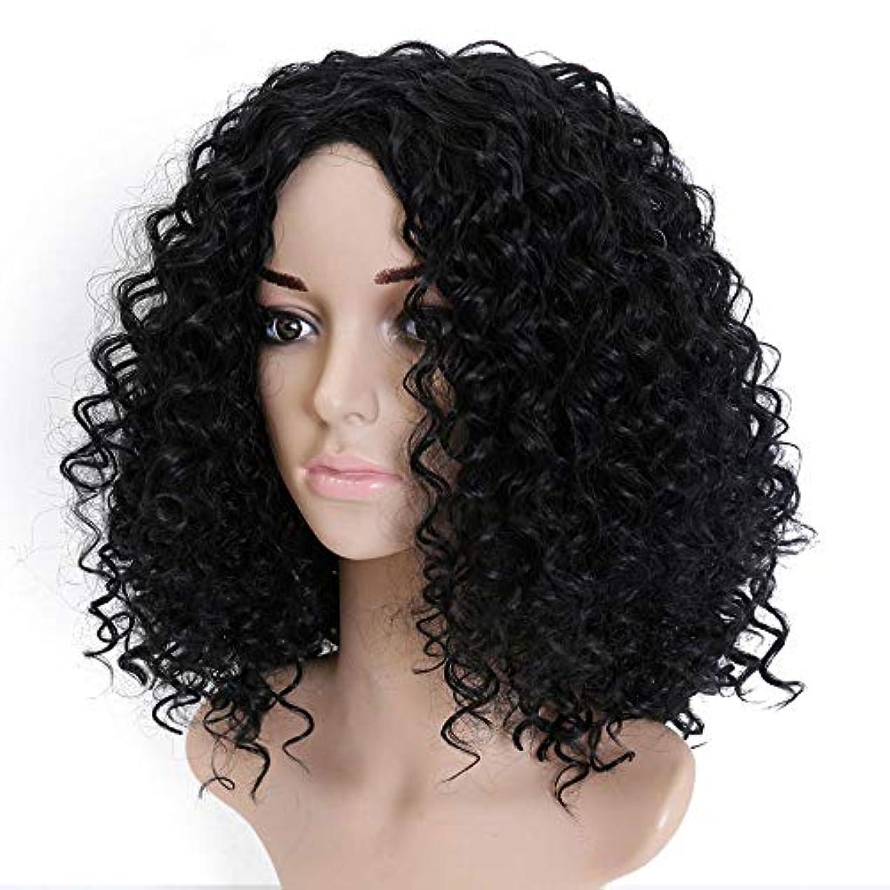 争いビバタイプライター美しく 女性の合成ウィッグ耐熱髪ふわふわのアフリカ系アメリカ人の自然な黒髪用Allaosifyショートアフロ変態カーリーウィッグ (Color : #1B, Stretched Length : 20inches)
