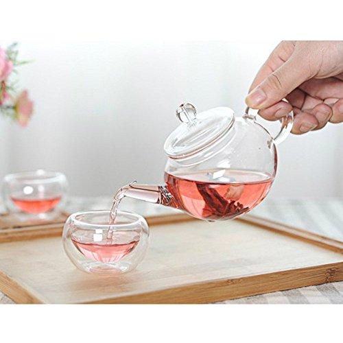 Nature park ティーポット 急須 ガラス 紅茶ポット かわいい 形状 デザイン 250ml