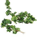 Luyue 【 観葉植物 アイビー 5本 】 壁掛け インテリア アンティーク 雑貨 造花 人工 フェイク 壁掛 グリーン 緑 植物 吊り 家庭やパーティ飾り (5本) (緑の楓の葉)