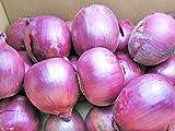 紫玉ねぎ(L?L大)10kg (赤たまねぎ) 北海道産【発送期間】9?3月 【出荷元:北海道四季工房】