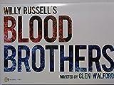 パンフレット ジャニーズWEST 桐山照史 神山智洋 ★ 2015 舞台 BLOOD BROTHERS ブラッドブラザーズ ジャニーズグッズ