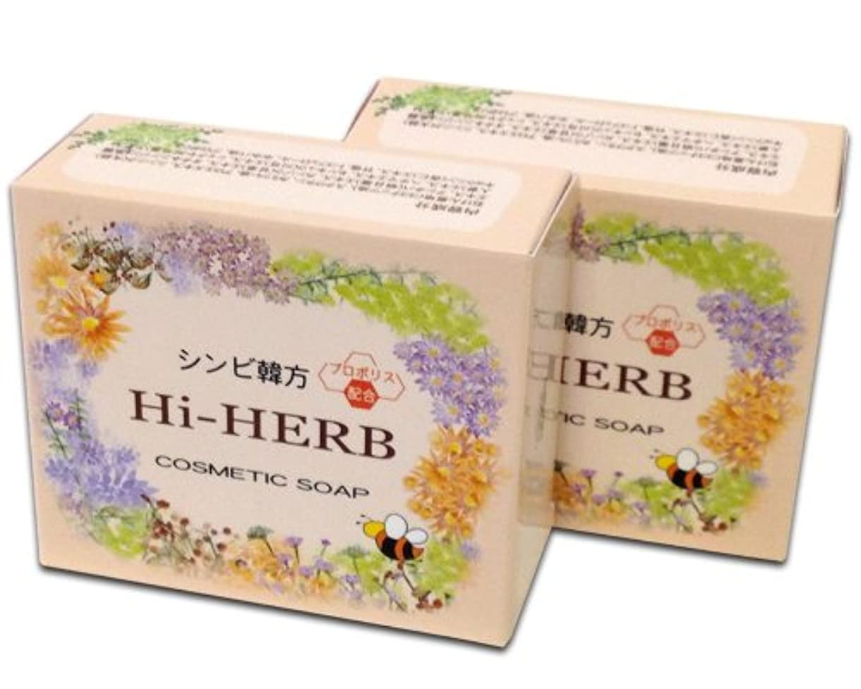 チャート援助する情熱的シンビ韓方ハイハーブ石鹸 (2個セット)