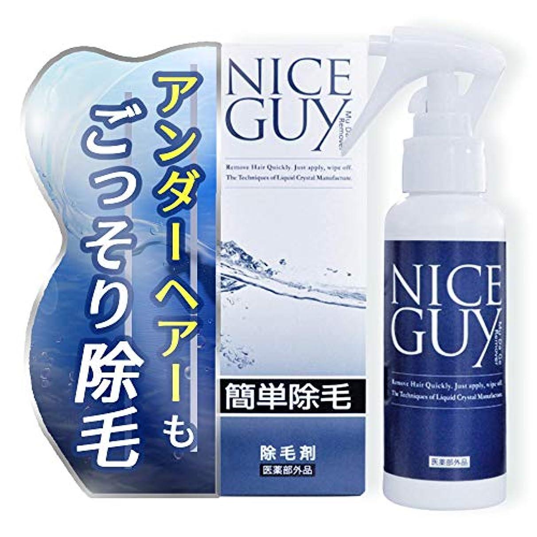 白いきゅうりインレイナイスガイ 除毛クリーム 医薬部外品