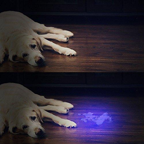 Vansky51LED 紫外線ブラックライト UVライト懐中電灯 ペットのオシッコ汚れ対策に(ブラック) Vansky