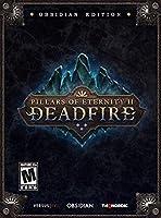 Pillars of Eternity II - Deadfire - Obsidian Edition - Windows Mac & Linux [並行輸入品]