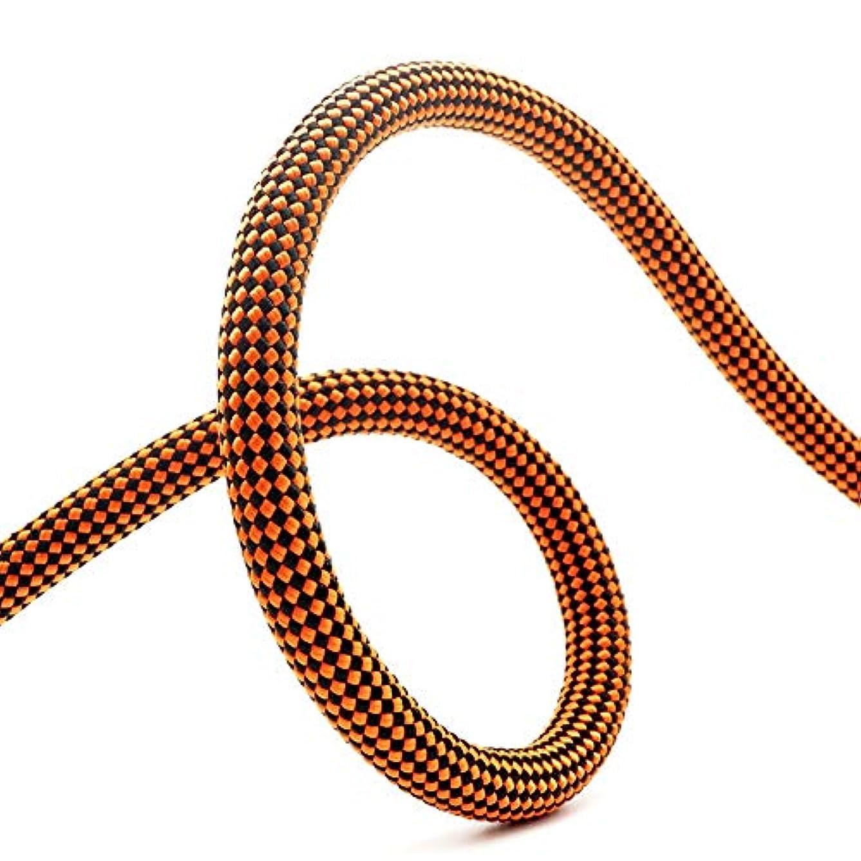 母音鳥ささやきクライミングロープ ザイル 安全高強度ツリークライミングジム屋内屋外のハイキングマグネット釣り火災避難ロープ 登山ロープ (Color : Orange, Size : 9.8mm x 30m)
