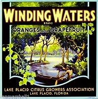 マグネットLake PlacidフロリダWinding WatersオレンジCitrus Fruit Crateマグネットアートプリント