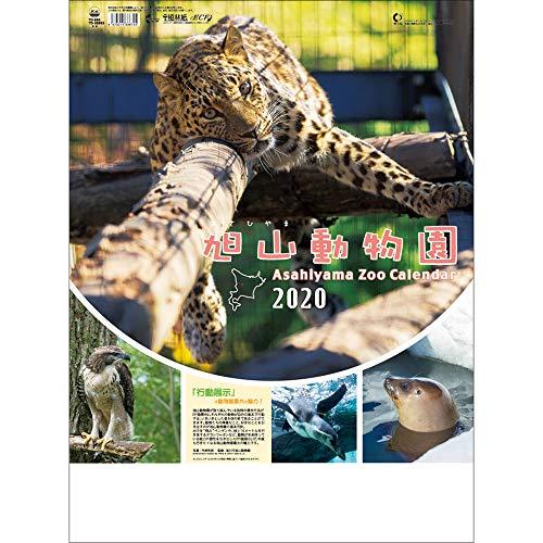 TD-30893 旭山動物園カレンダー(2020年版カレンダー)