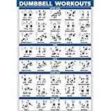"""Palace Learning Dumbbell Workout Exercise Poster - Laminated - Free Weight Body Building Guide 
