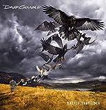 飛翔(Deluxe DVD Version)(初回生産限定盤)(DVD付)