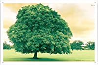 #25778スプレンディッドツリーのティンサイン 金属看板 ポスター / Tin Sign Metal Poster of #25778 Splendid Tree