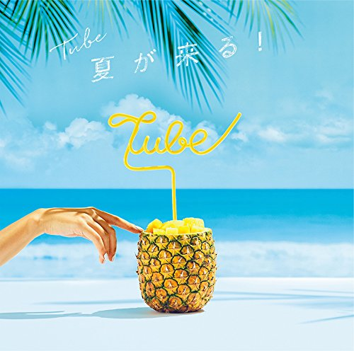 【夏を抱きしめて/TUBE】夏のTUBEの真骨頂!代表曲の歌詞の意味を解釈&YouTubeで動画もの画像