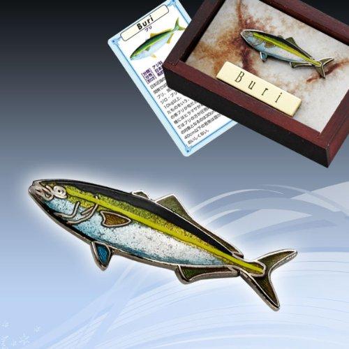 本七宝魚タイニーピンコレクション海水魚ブリ